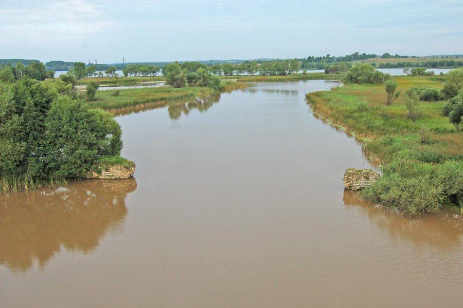 Загрязняют реку Черепеть .